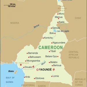 asphalt drum mix plant exporter in Cameroon